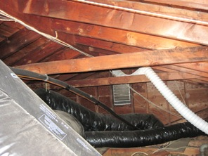 picture of attic with mold, attic mold picture