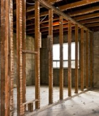 Treatment of Black Mold Inside Walls