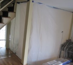 Safety measures during mold remediation