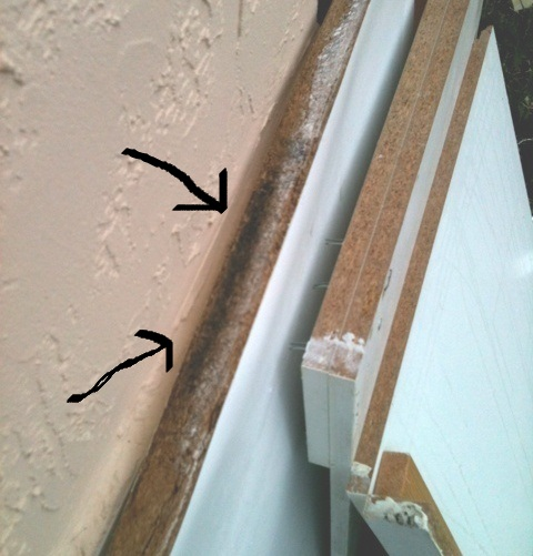 Black mold on bathroom particle board