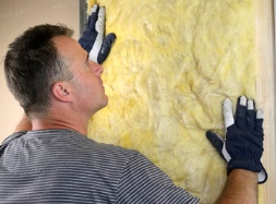 Replacing Moldy Insulation
