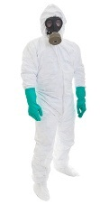 Mold removal protective suit