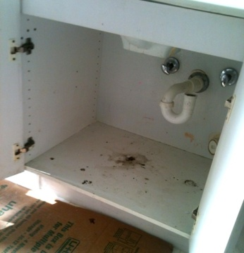 Vanity surface with black mold