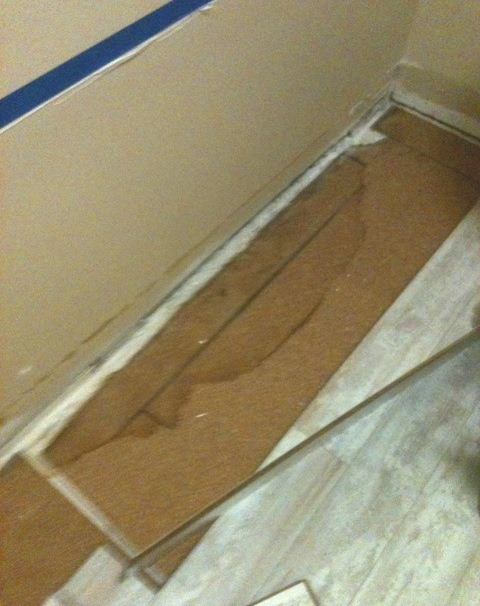 Basement vapor barrier with mold
