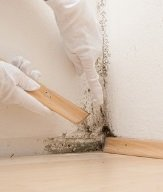 Mold Remediation Protocol