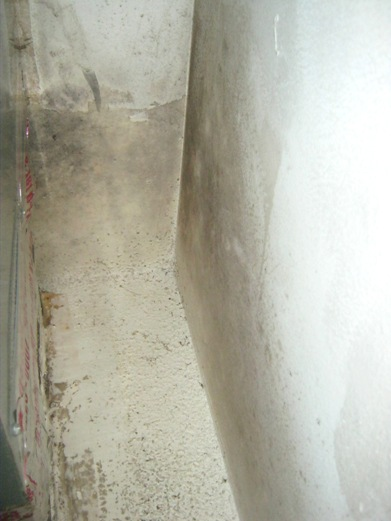 Mold near heating system