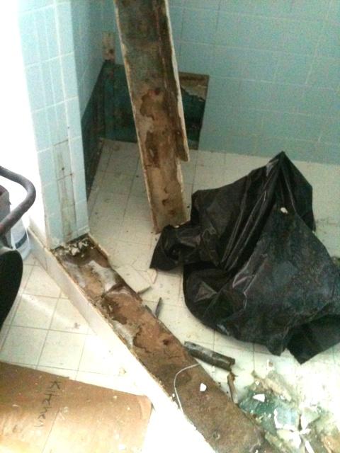 Mold in shower stall under tiles