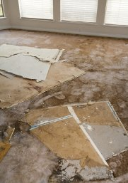 Water damage to carpet and plasterboard