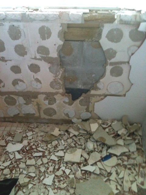 Mold in wall from water intrusion